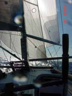 Downwind with a large spinnaker and a staysail